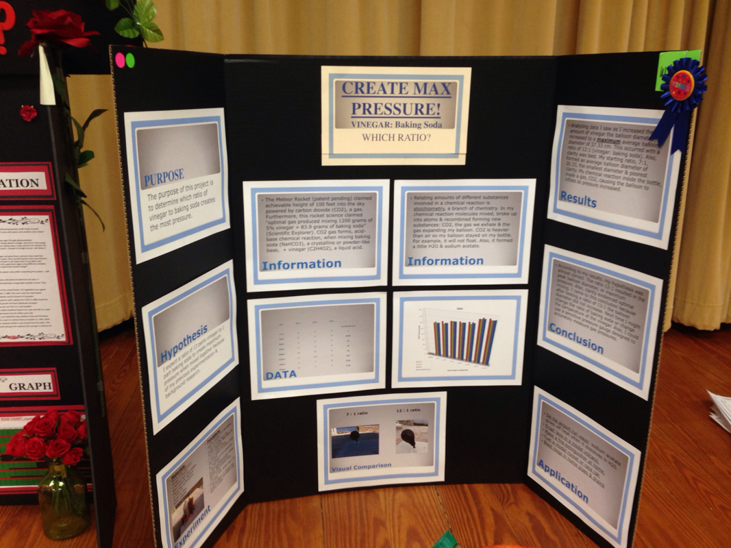 ... winning Science Fair Projects - Mrs. Schandel's 5th Grade Gifted