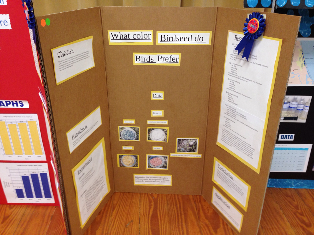 Pine Trails Winning Science Fair Projects on Ideas For 5th Grade Winning Science Fair Projects