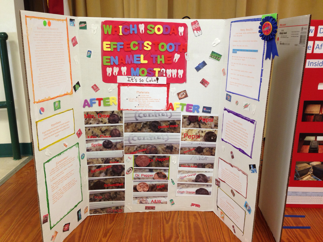 pine trail's winning science fair projects - mrs. schandel's 5th